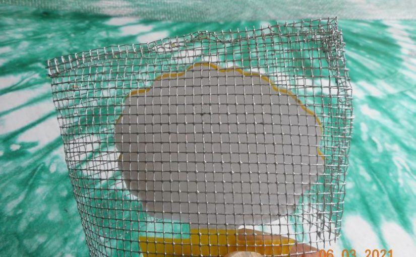 Post #G21-032:  Cucumber beetles, bee-proof sticky traps, neem oil.